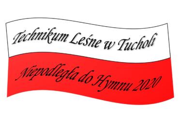 Konkurs fotograficzny Bory Tucholskie w Obiektywie Leśników